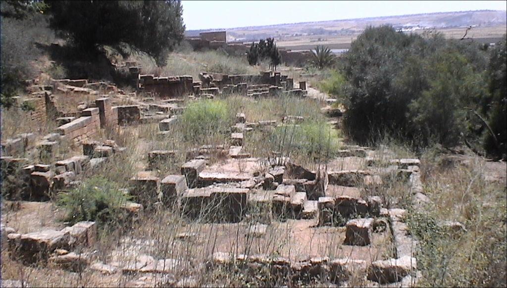 Phoenician colonies