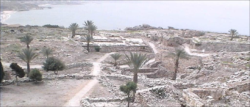 origin of the Phoenicians
